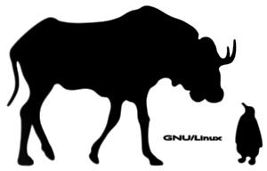 GNU + Linux