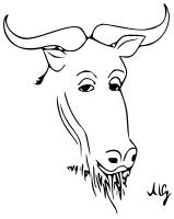 [Immagine di uno GNU Filosofico]