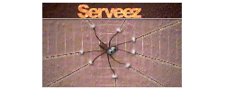 logo do serveez