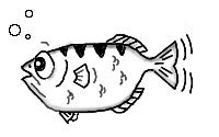 [image of Archer