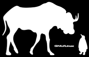 [Gnu and Tux on black]