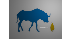 [Gnu and Tux wallpaper, colored shapes]